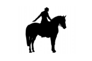 Open Unofficial Dressage at the SEC International Arena logo