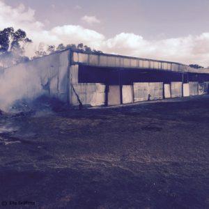 bush fires in WA and SA