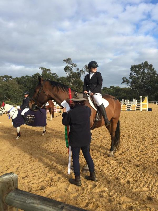 Great Friendly showjumper and eventer