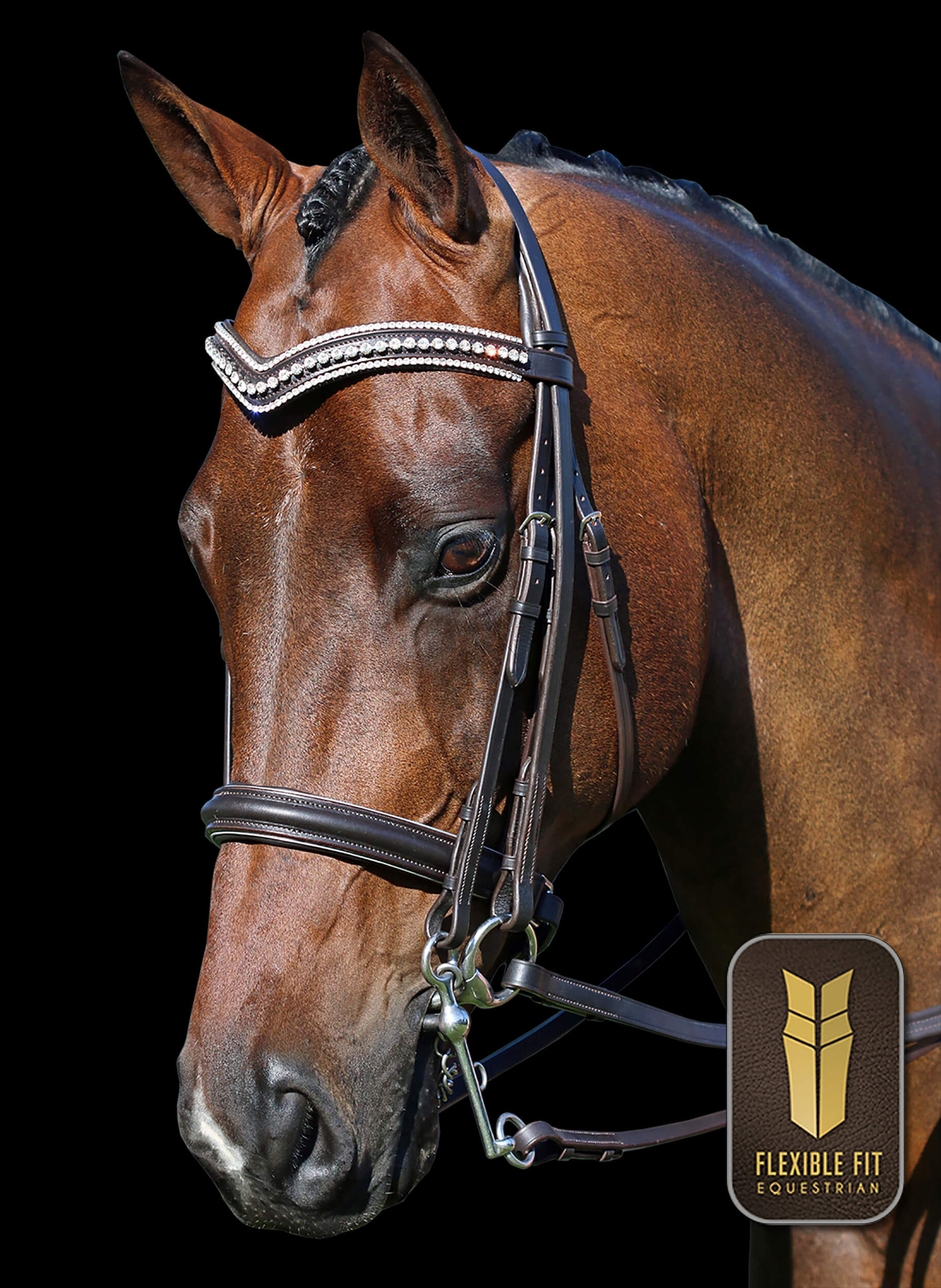Havana 2 in 1 Gel Padded English Leather Double Bridle