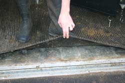 Horse Float Flooring Safety