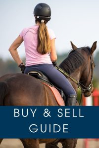 Buying and Selling Horses on Cavalletti