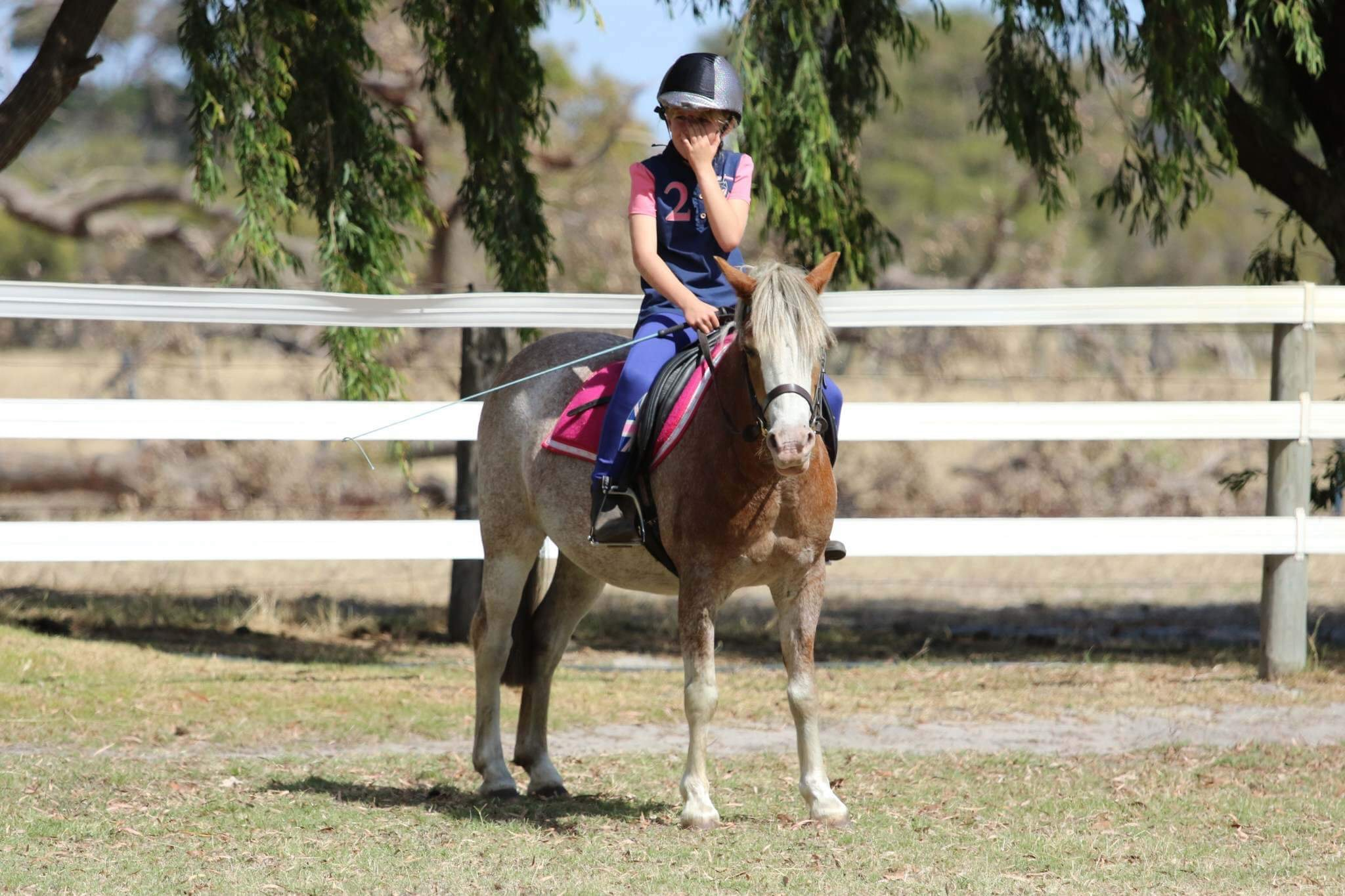 Mothers Wonder Pony for Sale Lead Rein/First Ridden