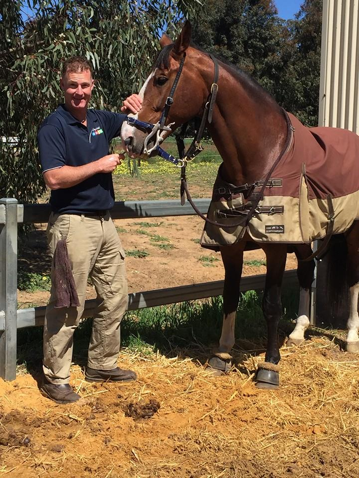 AG Equine Dentist – All Areas