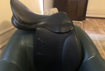 Trainers GP Saddle