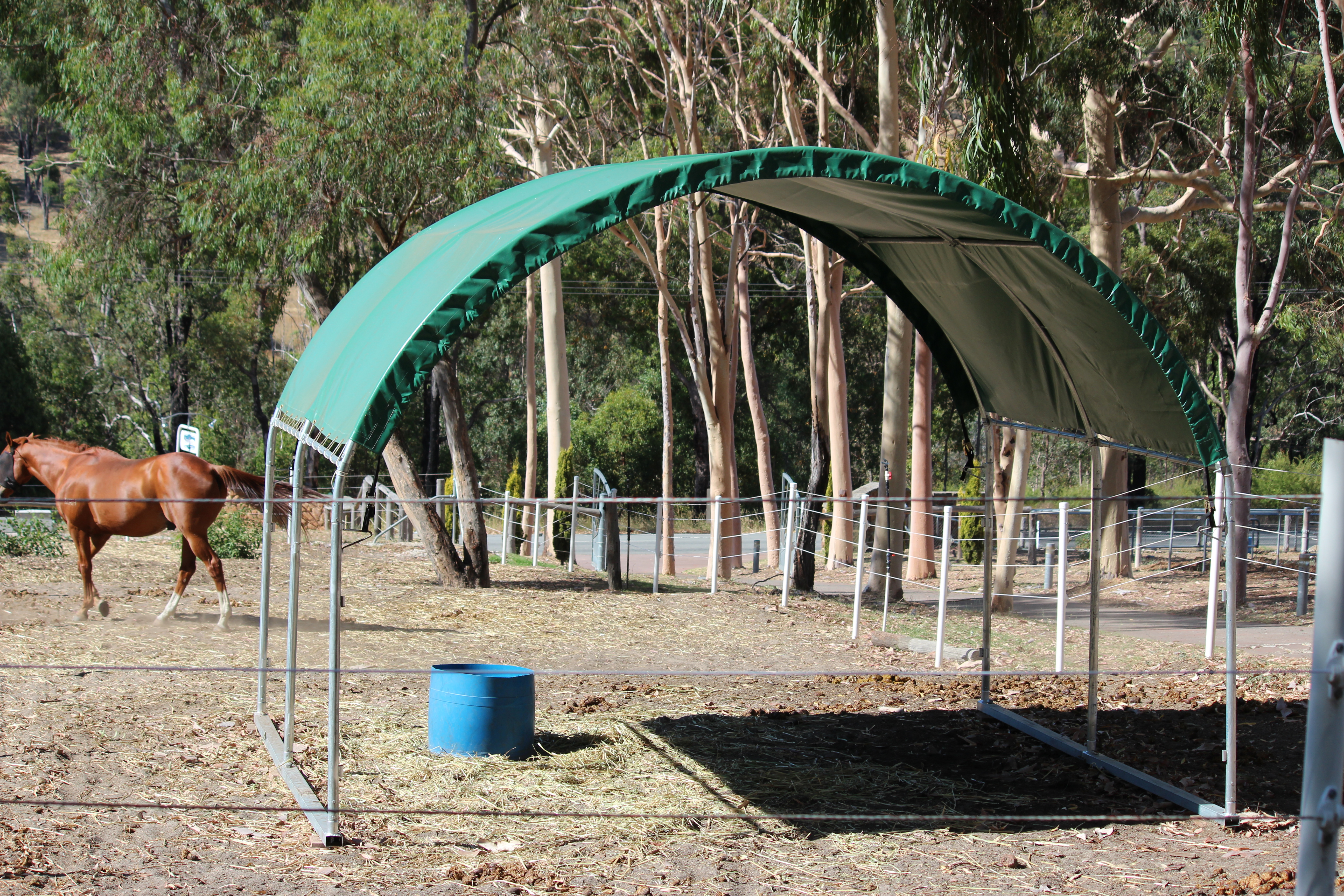 Agistment with Indoor Arena and Full Board $165 per week in Perth Hills