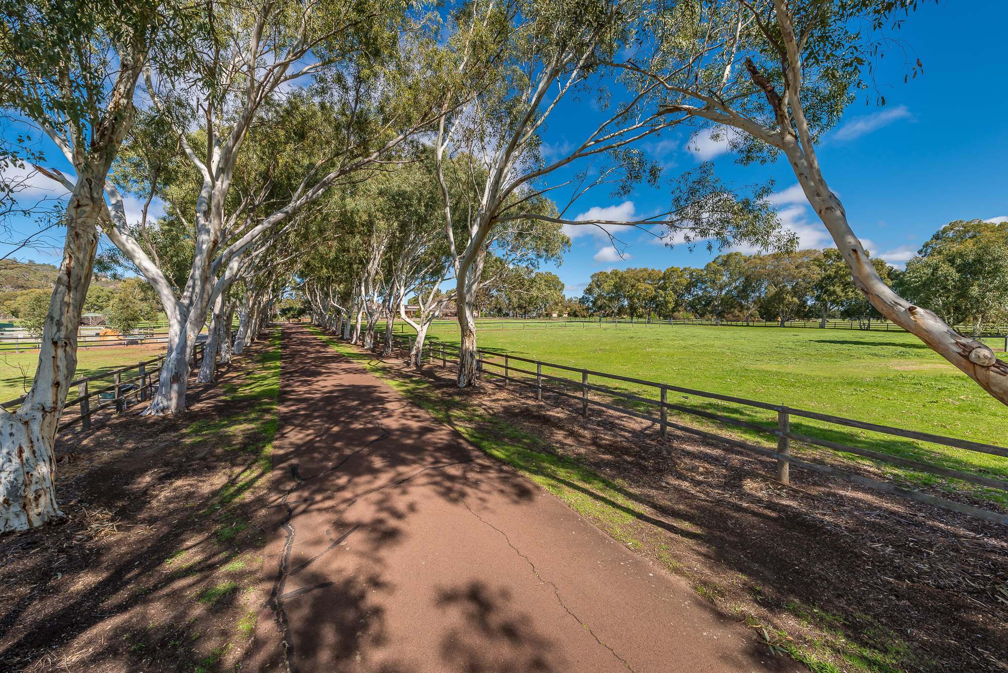 Swan Valley's Premier Equestrian Estate