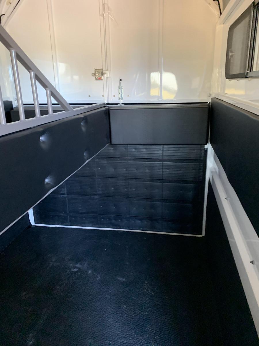 2020 new 2 HSL X Warmblood float