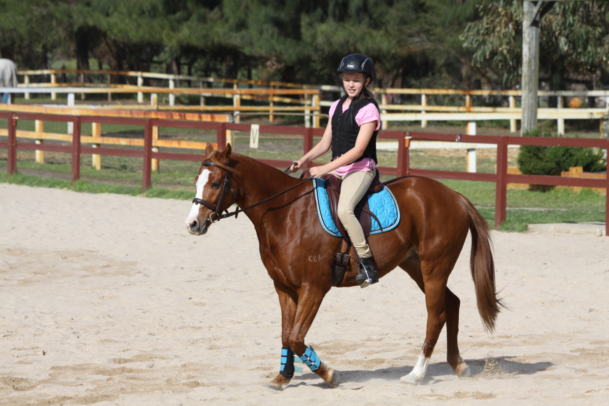 Riding Lessons available