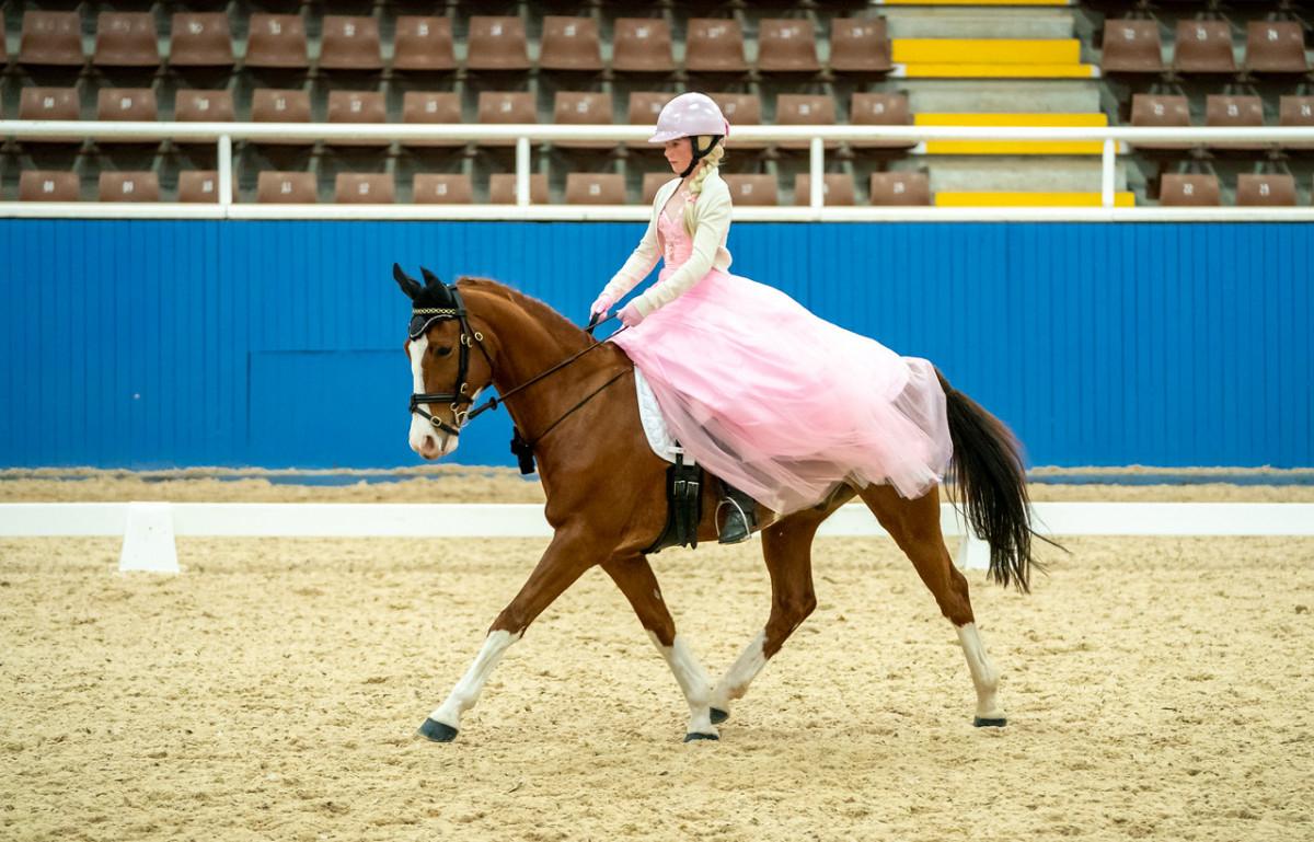 Super Competitive Eventer/Dressage